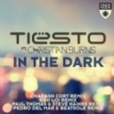 Tiësto feat. Christian Burns - In the Dark (Ken Loi Remix)