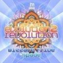 Spade, Bizzare Tribe - Evolution 2 Revolution (Original Mix)