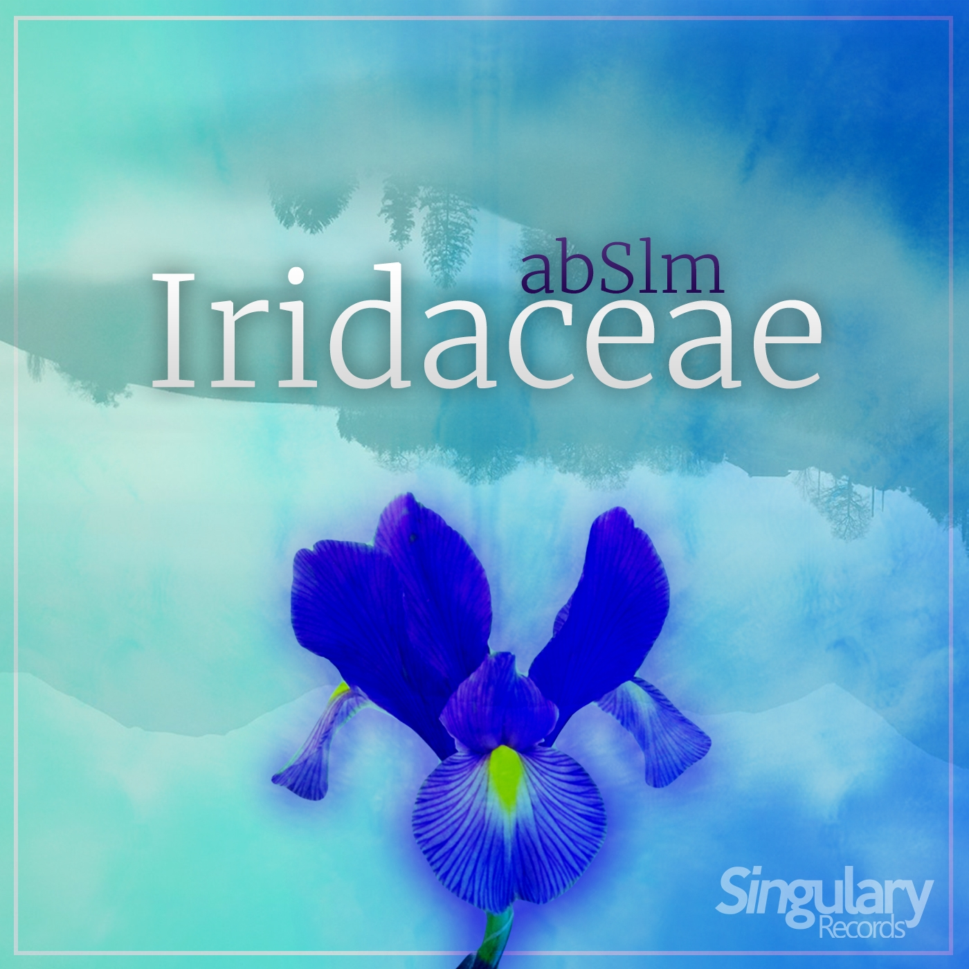 abSlm - Iridaceae (Original Mix)