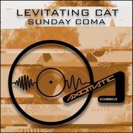 Levitating Cat - Sunday Coma (Original mix)