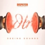 DLR feat. Ant TC1 - The Grip (Original mix)