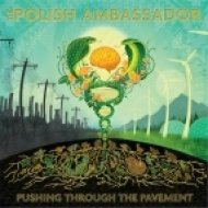 The Polish Ambassador - Forever Lost ft. Lafa Taylor (Original mix)