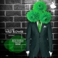 Flying Point - Wild Flower (Marten Sundberg Remix)