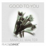 Marcel Walter - Angel Dust (Original Mix)