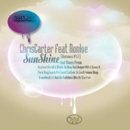 ChrisCarter feat. Nonkie - SunShine (Who De Warrior Late Approved Mix)