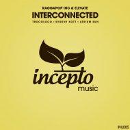 Raggapop Inc & Elevate - Interconnected (Atrium Sun Remix)