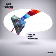 Tonejob - Prism (Original mix)