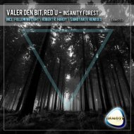 Valer den Bit, rEd\'u - Insanity Forest (Robert R. Hardy Remix)