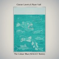Ciaran Lavery & Ryan Vail  - The Colour Blue (MAILKY Remix)