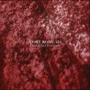 Fort Romeau - Insides (Roman Flugel Remix)