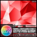 Hardwell & Martin Garrix vs Mikey P & Ryan Enzed vs. Hardwell feat. Harrison - Sally (Dj Eterno Mash Up)