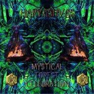 Haryashvas  - Magical Night Grooves (Original mix)