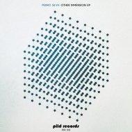 Pedro Silva - The Wizard (Pana Remix)