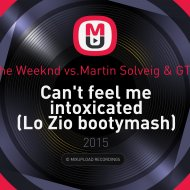 The Weeknd vs.Martin Solveig & GTA - Can\'t feel me intoxicated (Lo Zio bootymash)