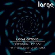 Local Options - Sweet Suprise (Original Mix)
