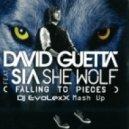 David Guetta & Sia ft. Dj Illona & Dj Diaz vs. J-Trick & Deorro - She Wolf (Dj EvoLexX Mash Up)