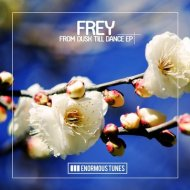 Frey - I Don\'t Want Your Number (Original Mix)