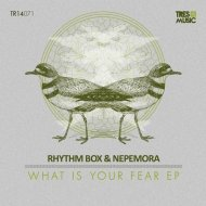 Rhythm Box & Nepemora - What is Your Fear (Original Mix)