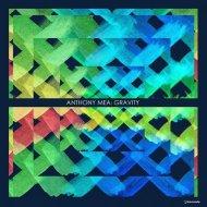 Anthony Mea - Gravity (Original Mix)
