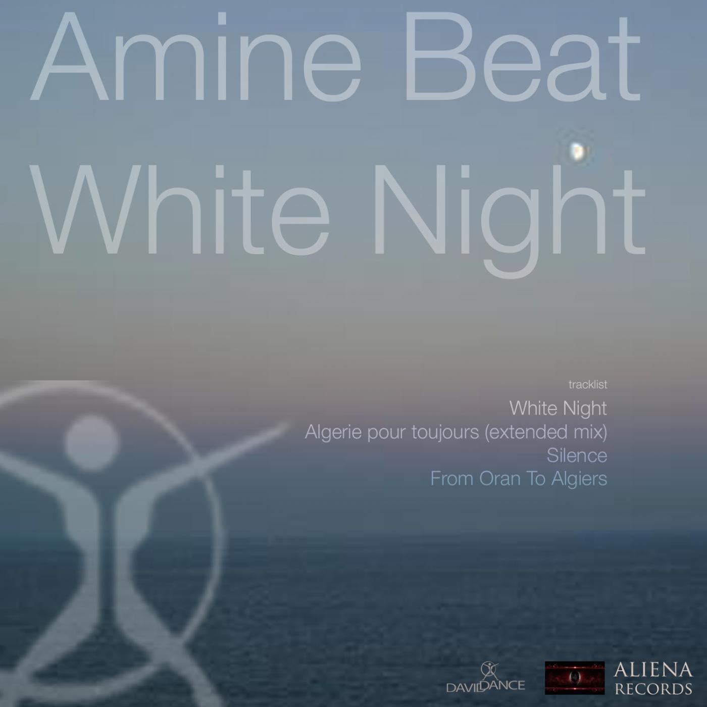 Amine Beat - White Night (Original mix)