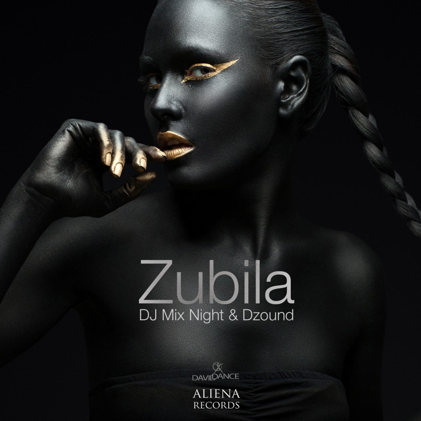 Dj Mix Night & Dzound - Zubila (Original mix)