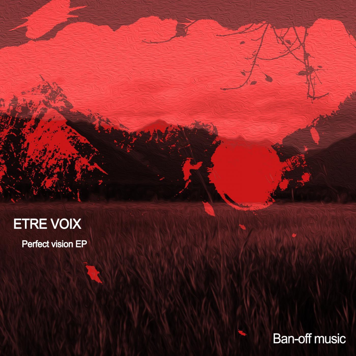 Etre voix - Perfect Vision (Original mix)