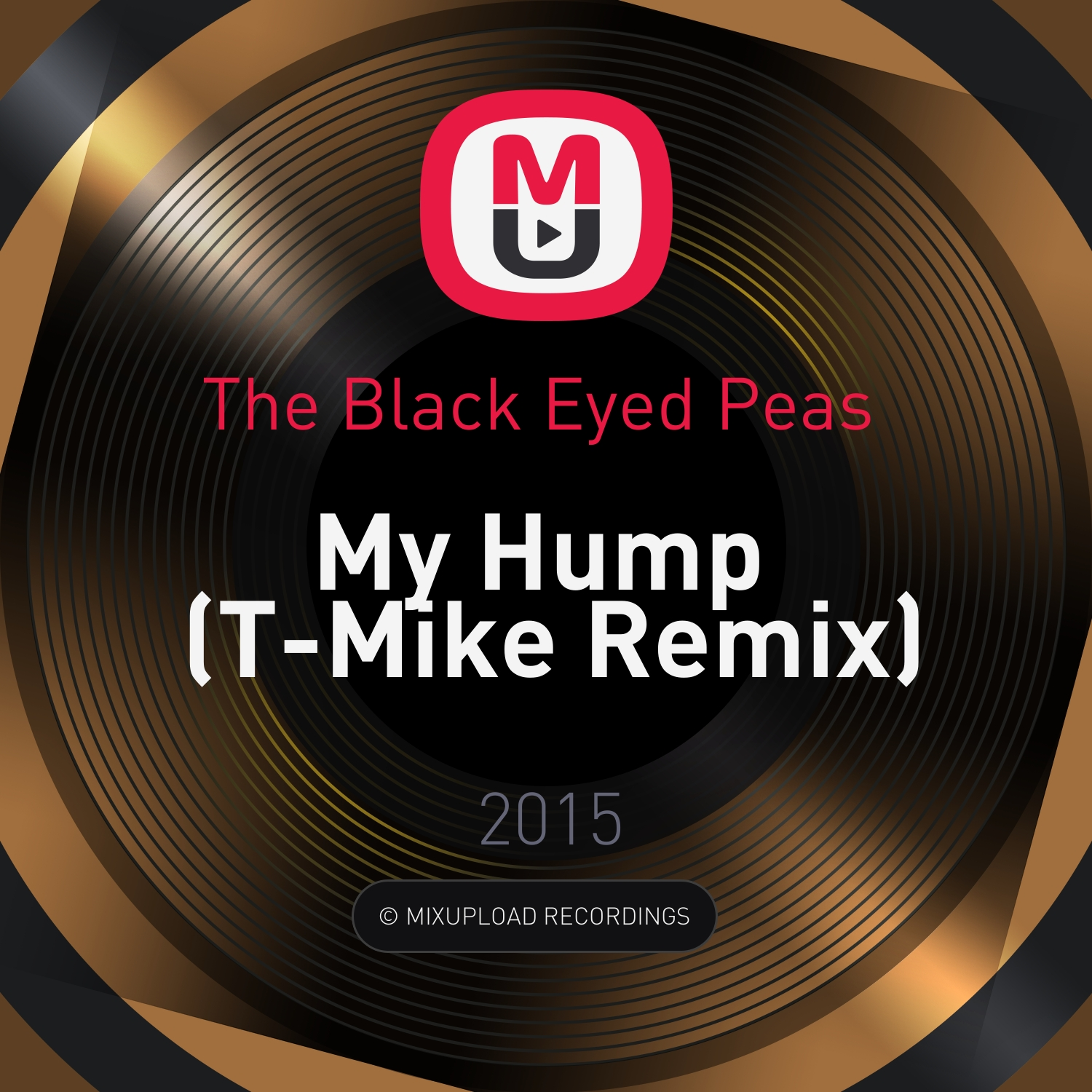 The Black Eyed Peas  - My Hump (T-Mike Remix)