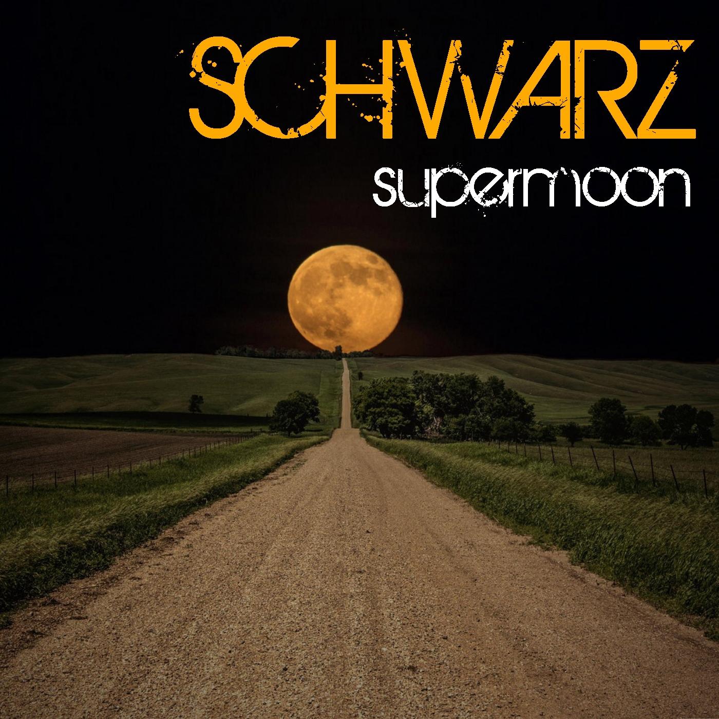 Schwarz - Levels Of Ecstasy (Original Mix)