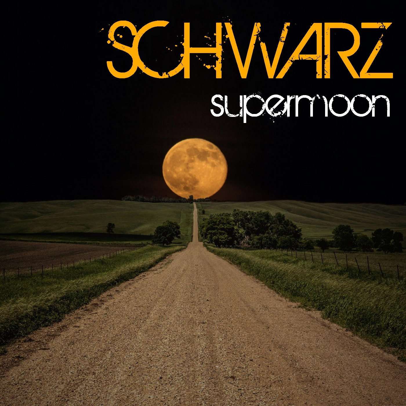 Schwarz - Respect (Original Mix)