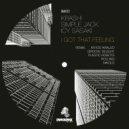 Icy Sasaki & KRASH! & Simple Jack - I Got That Feeling (Plastic Robots Remix)