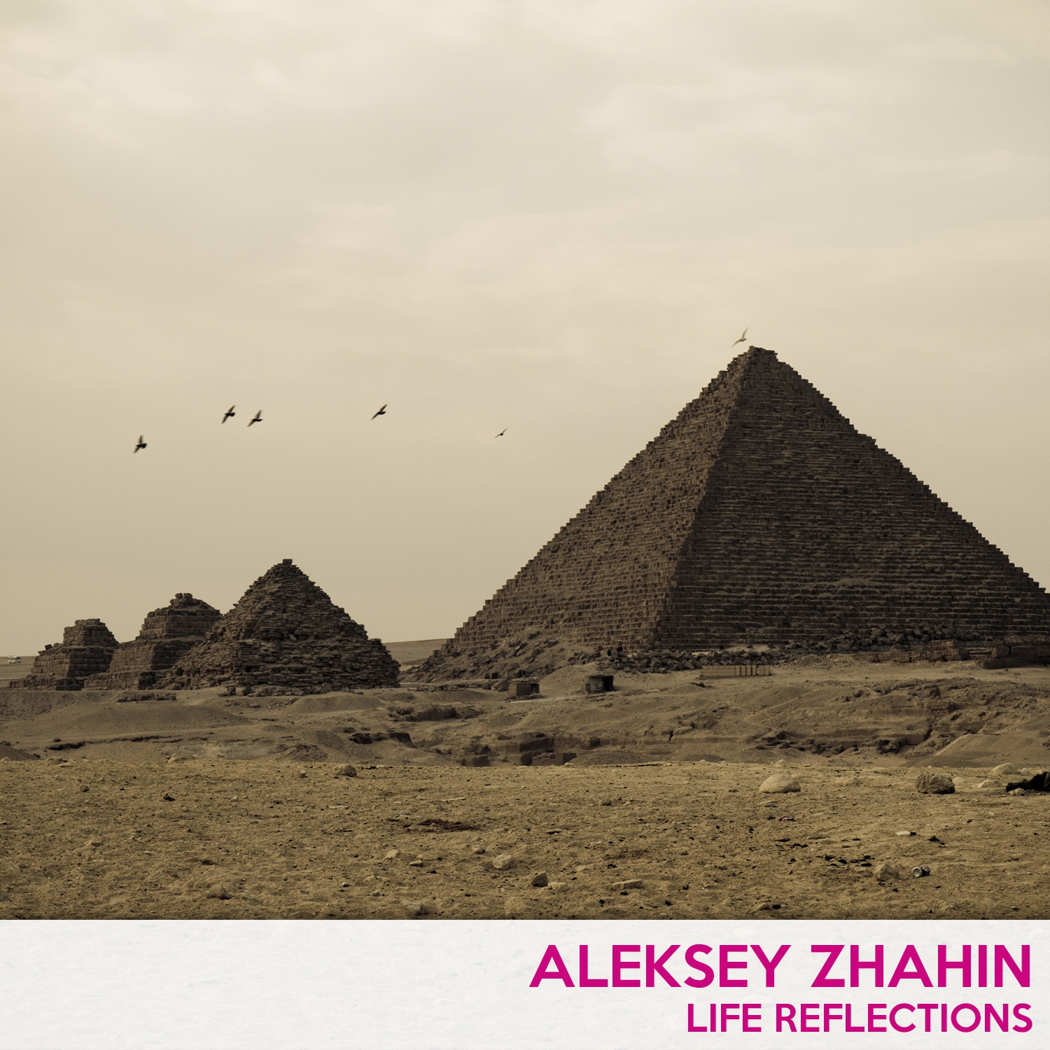 Aleksey Zhahin - The dissapointed expectations (Original Mix)