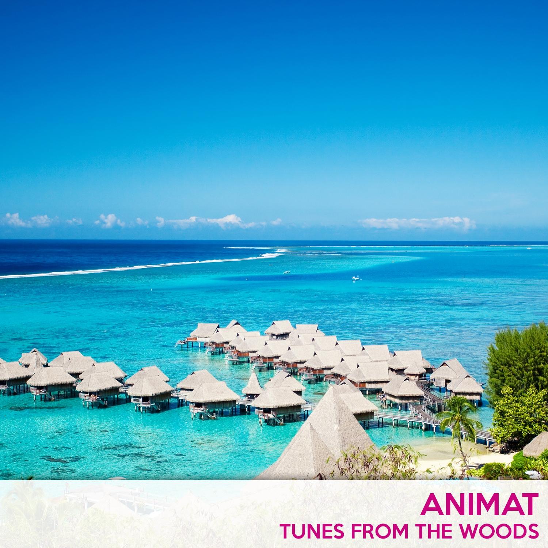 Animat - Lullaby For K (Original Mix)