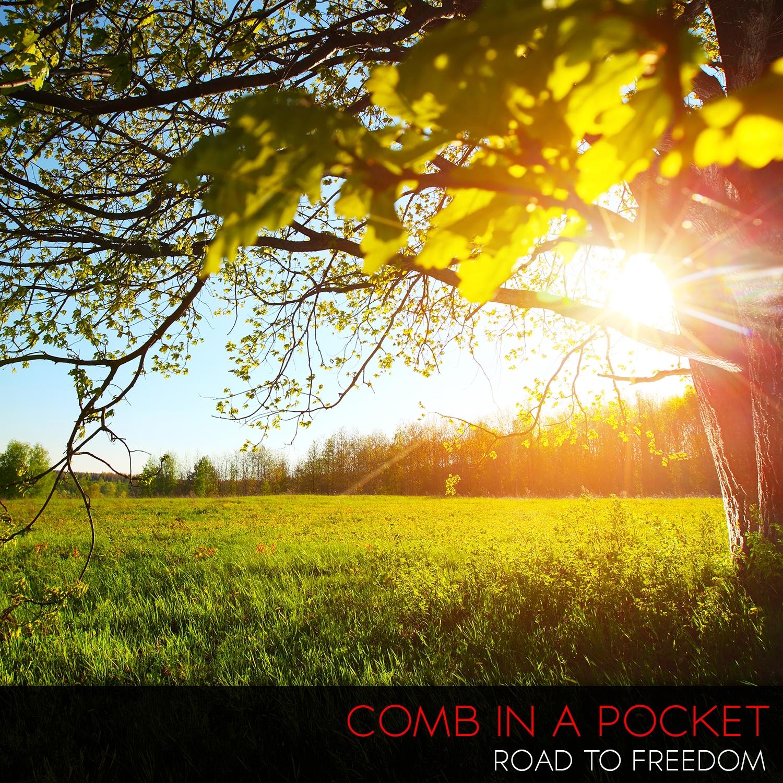 Comb In A Pocket - Through The Gates Of Perception (Original Mix)