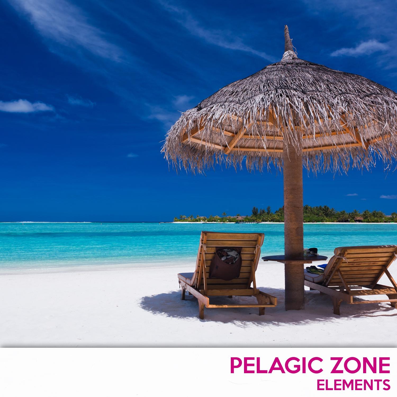 PelagicZone - Zero Gavity (Original Mix)