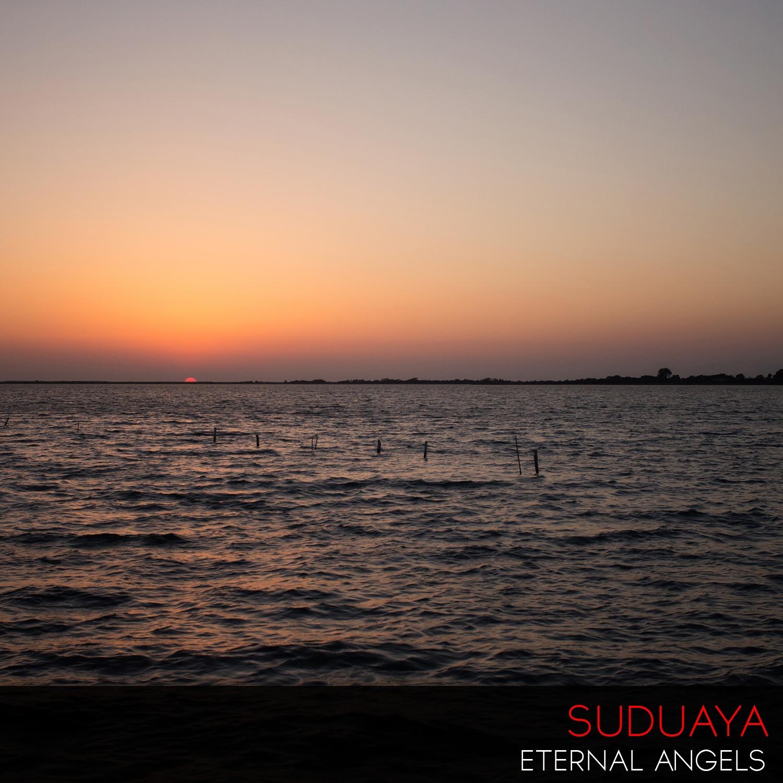 Suduaya - Cellular Memory (Original Mix)
