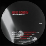 Jesus Gonsev - Walking In The Glass (Highland Brothers Inc. Remix)