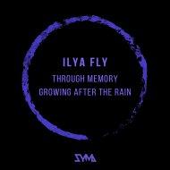 Ilya Fly - Through Memory (Original Mix)