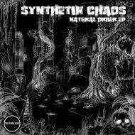 Synthetik Chaos & Mlle Vitale - The Access (Original mix)