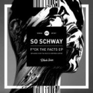 So Schway - Fuck The Facts (Original Mix)
