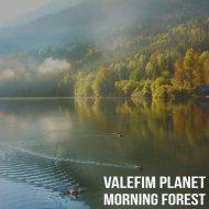 Valefim Planet - Morning Forest (Original Mix)