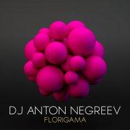 Dj Anton Negreev - Florigama (Original Mix)