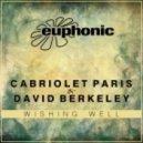 Cabriolet Paris & David Berkeley - Wishing Well (Stoneface & Terminal Remix) (Stoneface & Terminal Remix)