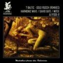 7 Baltic - Gold Rusch (David Gate Remix)