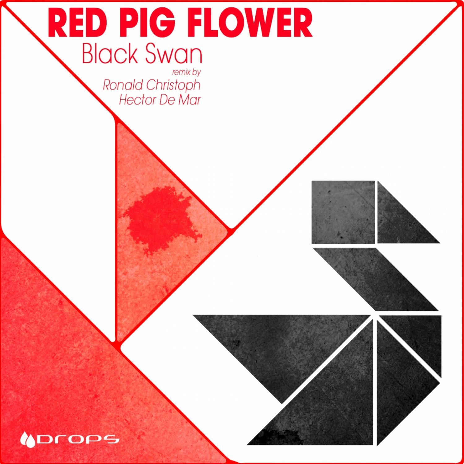 Red Pig Flower, Hector De Mar - Black Swan (Hector De Mar Remix)