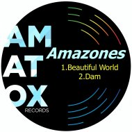 Amazones - Beautiful World (Original Mix)