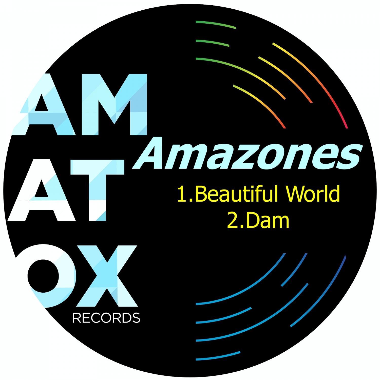 Amazones - Dam  (Original Mix)