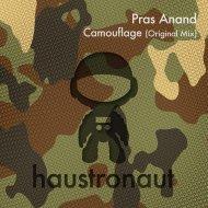 Pras Anand - Camouflage (original)