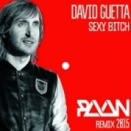 David Guetta - Sexy Bitch (PAAN Remix 2015)