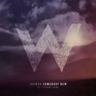 Jakwob ft. Tiffani Juno - Somebody New (Sane Remix)