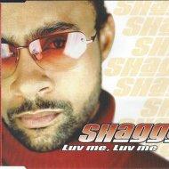 Shaggy - It Wasn\'t Me (Crash & Burn Remix)